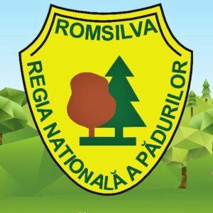 https://sfgh.rosilva.ro/