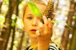Cunoaște flora și fauna locală