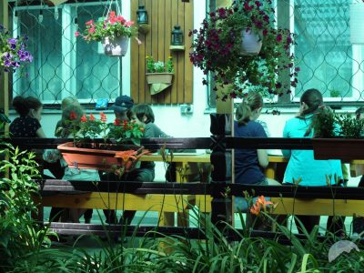 Terasa plină cu flori